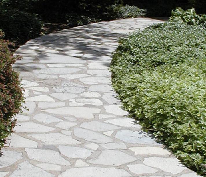 Stone Walkway Cleaned By Mr Clean Pressure Washing